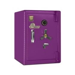 550S صندوق نسوز ضد سرقت سنگین