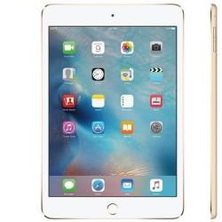 iPad mini 4 WiFi Tablet-16GB